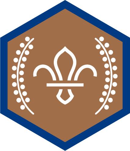 Chief Bronze Award